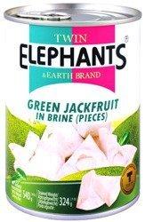 Zielony jackfruit w słonej zalewie 24 x 540g (cały karton) - Twin Elephants & Earth Brand